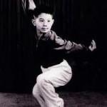 Wushu Jet Li