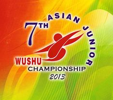 7-Asian-Wushu-Jr
