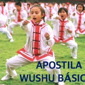 Apostila-Basicos-Wushu