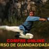 Curso-On-line-kungfu