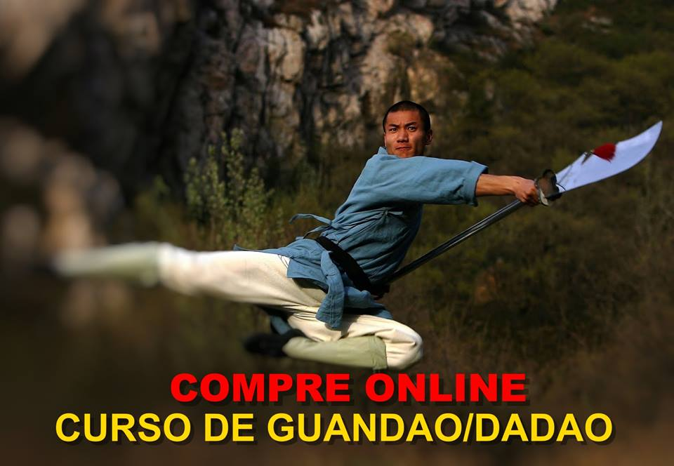 Curso-On-line-kungfu